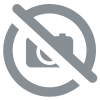 "Framed photo ""Les Marches Blanches."""